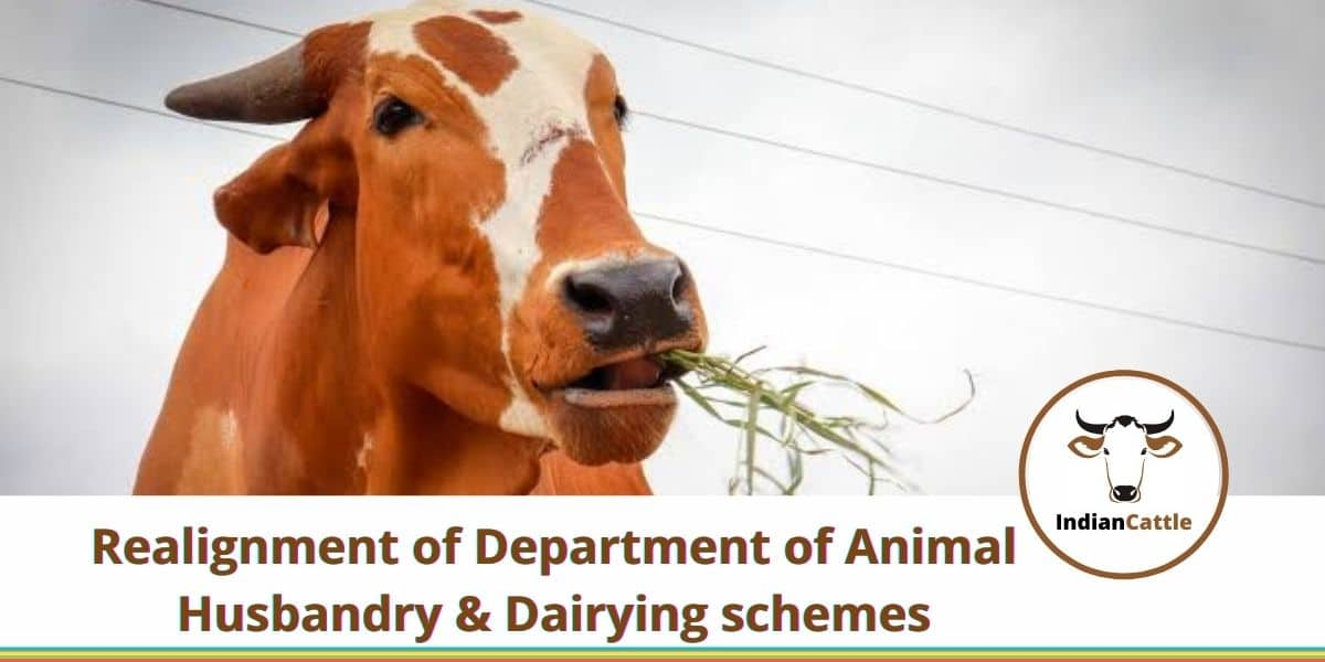 Realignment of DeAnimal Husbandry & Dairying schemes